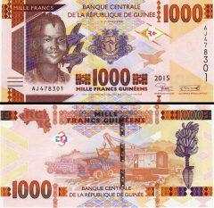 Guinea1000-2015