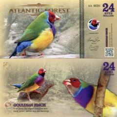 Atlantic-forest24-16