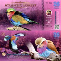 AtlanticForest26-16