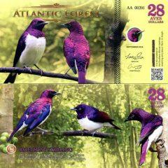 AtlanticForest28-16