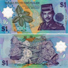 Brunei1-2007