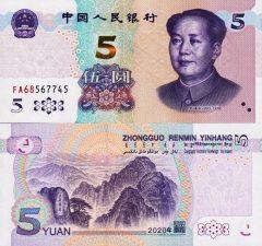 Cina5-2020