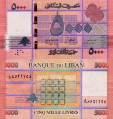 Libano5000-2014