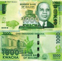 Malawi1000-2017
