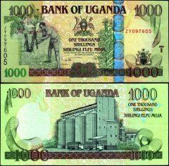Uganda1000-2008-ZY09