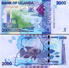 Uganda2000-2019