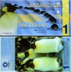 antartica1-2011-com
