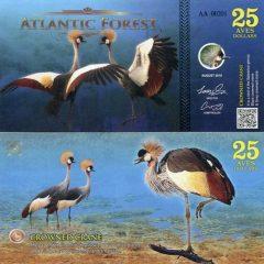 atlantic-forest25-16