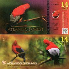 atlanticforest14-16