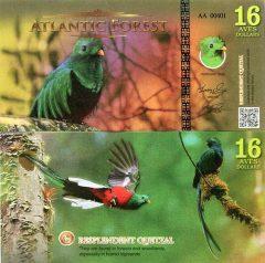 atlanticforest16-16
