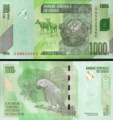 congo1000-2013