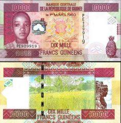 guinea10000-12