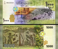 siria1000-2015